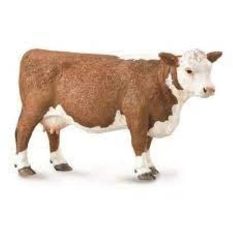 HEREFORD COW L